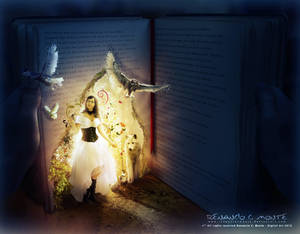 The Magic Book by renanciocmonte