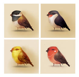 Birdies by nicho91