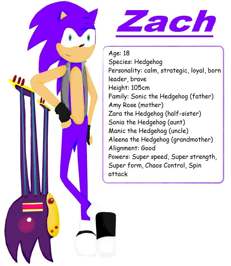 Zachary The Hedgehog Zach the Hedgeh...