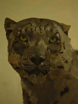 Tigru(in proces)