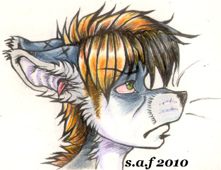 Devon glares 2 by foxjane