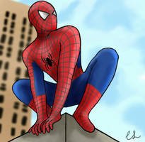 Spiderman by lambini
