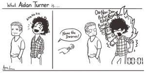 What Aidan Turner is...