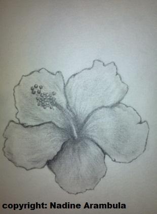 Hibiscus Flower by xXCelestialMaidenXx
