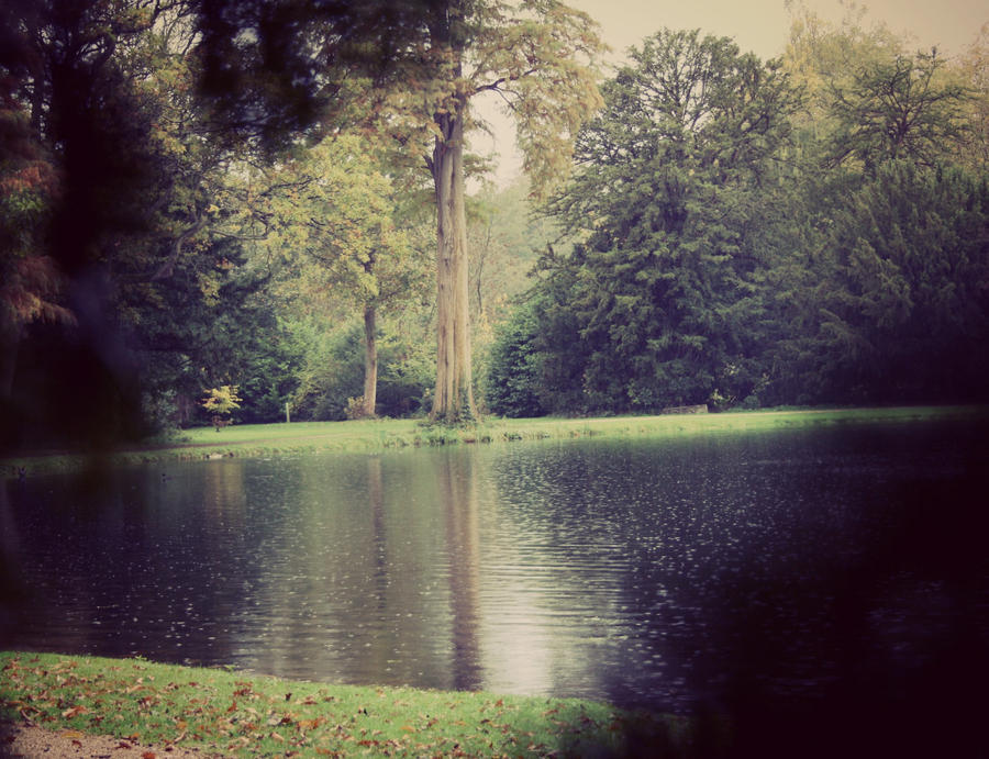 Painshill 1 by Lamb--Ox
