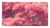 |STAMP| Flowers by Volatile--Designs