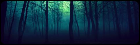 dark forest - decor
