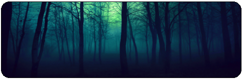 |DECOR| Dark Forest by Volatile--Designs