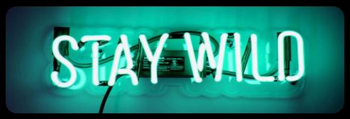 |DECOR| Stay Wild-Glow by Volatile--Designs