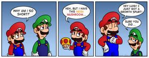 Mario's Solution
