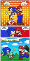 The Mario/Sonic Combo