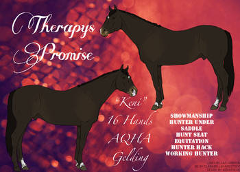Therapys Promise- Keni by Disneyhorse