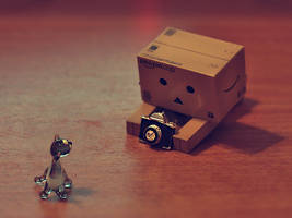 danbo's first camera by Estelar