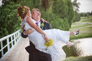 Hanna Wedding 4 by hartless