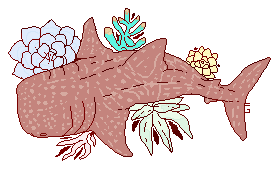 whale succulent shark by carousel-horses