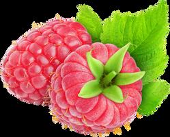 Raspberry by hrtddy
