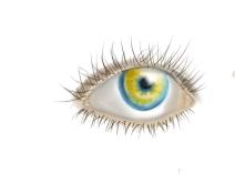 The eye by AniRingo