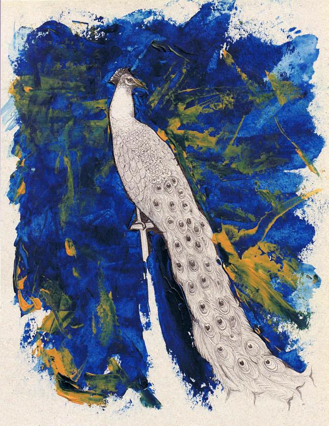 Peacock by Bit-sinna