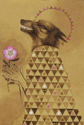 Coyote And Wild Rose