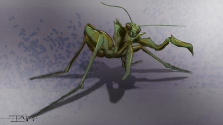 Praying Mantis (WIP) by I-Massey
