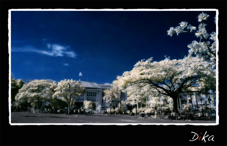 infrared by handika10