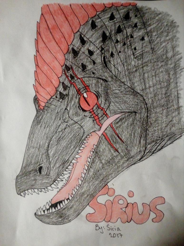 Raptor(Sirius) by Sirius1999