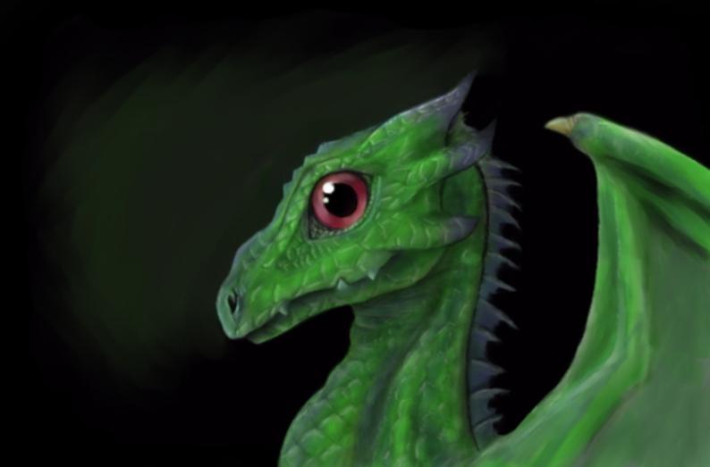 Baby Dragon by Shiray21
