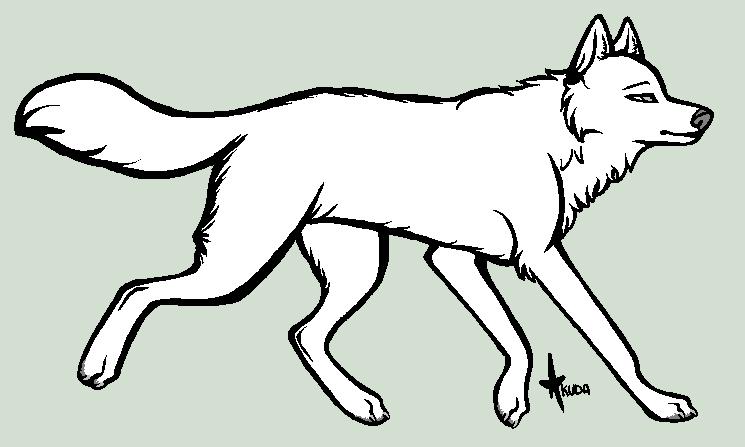 Картинка волка шаблон