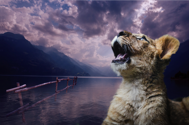 Lion by L-inda