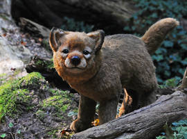 Poseable art doll, wolf pup