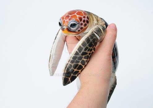 Poseable Art Doll, Turtle
