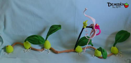 Bulbophyllum echinolabium Plush
