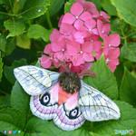 Moth embroidered plush by DemodexPlush