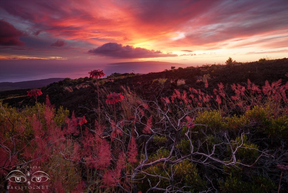 Hawaiian Sunset - Maui by Bakisto