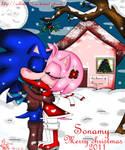 Merry christmas 2011-SonAmy