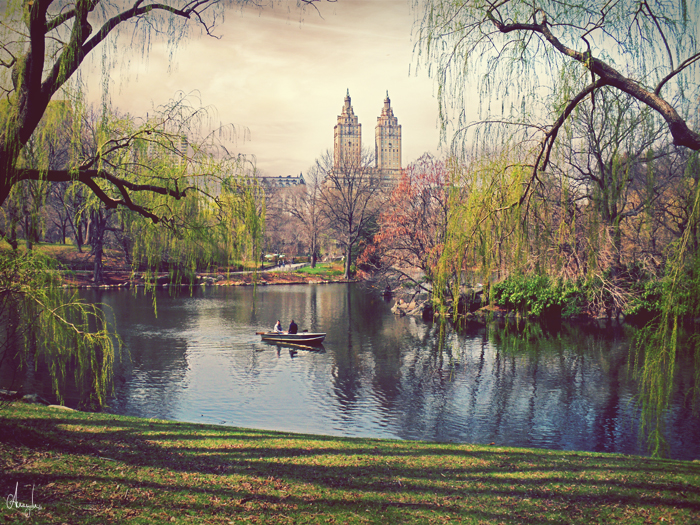 Central park, new york by Anemyah