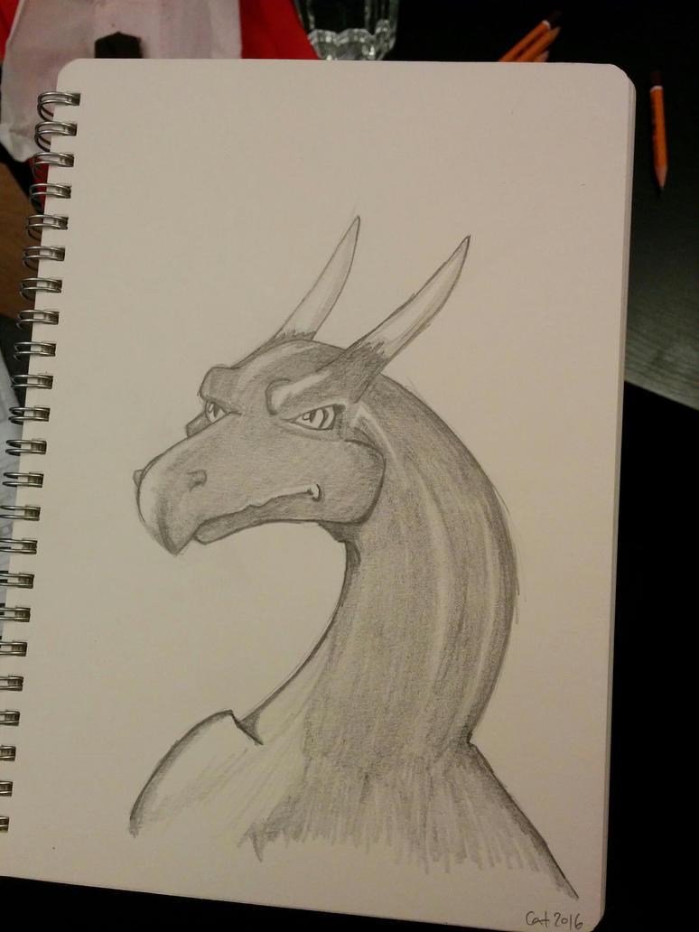 le dragon by shamlieth