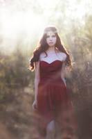 Fallen Mists by EmilySoto
