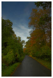 the road by DiveSurfer
