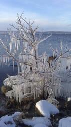 South of Vettern 9 december 2012