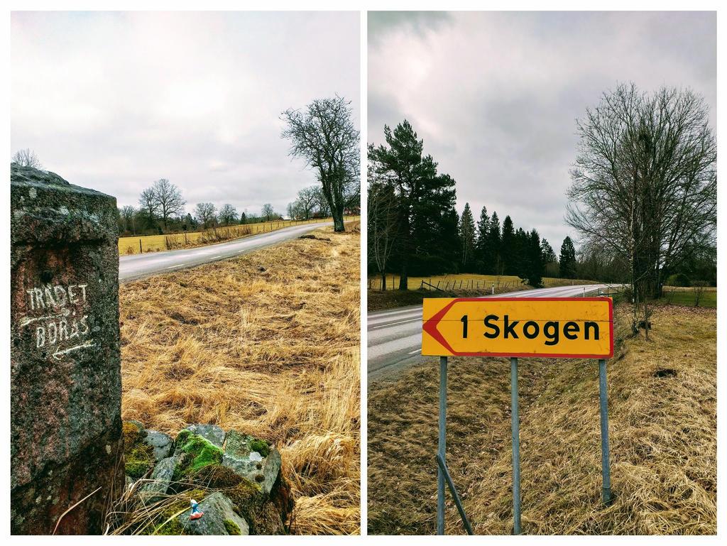 1Tree ~ Skog1 by lennarrrt