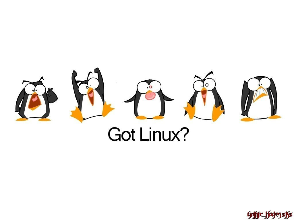Got Linux by gothic-hades