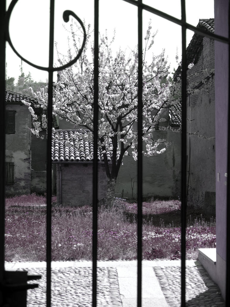 Springtime Denied by 23FeetUnder