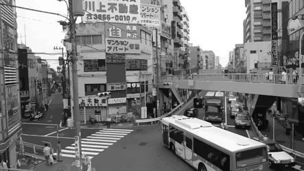 shinkoiwa vectorized by shutonga