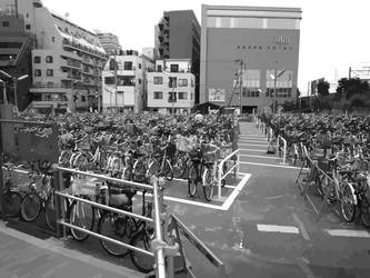 shinkoiwa cycle park vectorize by shutonga