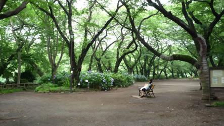 inokashira park - vectorized by shutonga