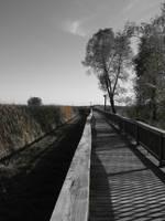 Boardwalk 0054 by Miskwaadesi