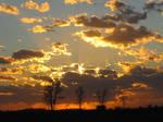 Sunset 0661