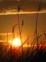 Sunset 1281 by Miskwaadesi