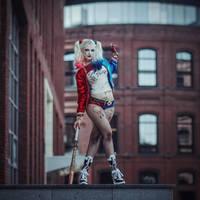 Harley Quinn by manulys